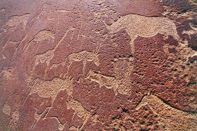 Namibia, Damaraland Wilderness Area, Twyfelfontein, Brandberg Mountains, Stone Age Rock Engravings--Giclee Print