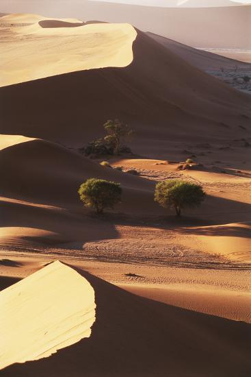 Namibia, Sesriem and Sossusvlei, Sand Dunes Desert at Namib NP-Gavriel Jecan-Photographic Print