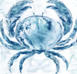Blue Marble Coast Crab by Nan