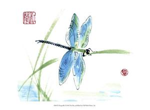Dragonfly by Nan Rae
