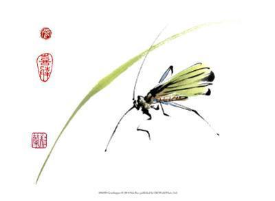Grasshopper by Nan Rae