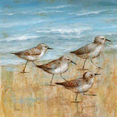 Sandpipers I