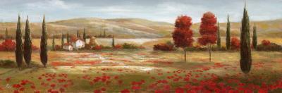 Tuscan Poppies II by Nan