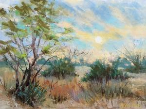 Texas Sunrise by Nancie King Mertz