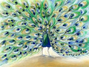 Peacock in San Diego 2, 2013 by Nancy Moniz