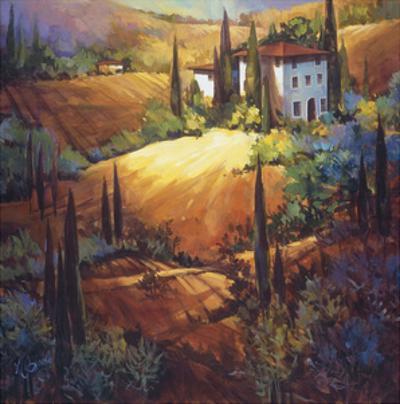 Morning Light Tuscany by Nancy O'toole