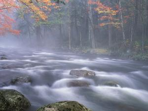 Big Moose River Rapids in Fall, Adirondacks, New York, USA by Nancy Rotenberg