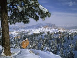 Bryce Canyon in Winter, Utah, USA by Nancy Rotenberg