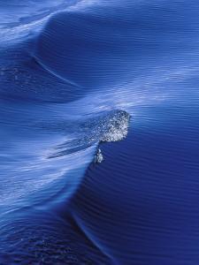Pattern from Wake Behind Boat, Inside Passage, Alaska, USA by Nancy Rotenberg