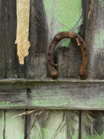 Rusty Horseshoe on Old Fence, Montana, USA