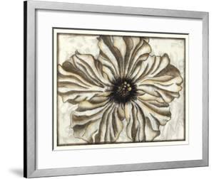 Fresco Flowerhead I by Nancy Slocum