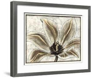 Fresco Flowerhead III by Nancy Slocum