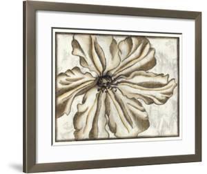 Fresco Flowerhead VI by Nancy Slocum