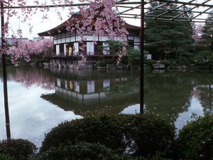 Geishas on the Balcony of Shobi-Kan Teahouse in Garden at Heian Shrine, Kyoto, Japan by Nancy & Steve Ross