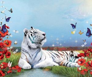 Bees, Bugs, And Tiger by Nancy Tillman