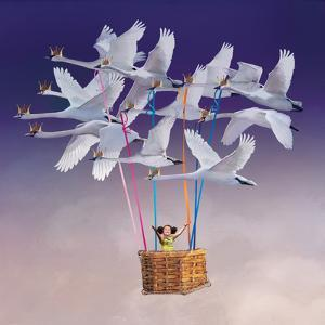 Flying with Swans by Nancy Tillman
