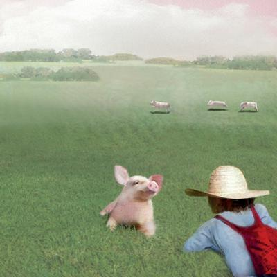 If You Were A Pig by Nancy Tillman
