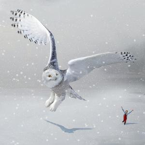 If You Were An Owl by Nancy Tillman