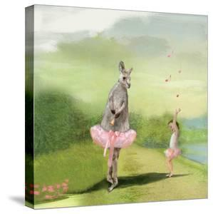 Kangaroo Ballet by Nancy Tillman