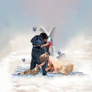 The Heaven Of Animals by Nancy Tillman