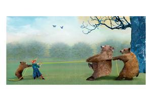 Three Bears Tug of War by Nancy Tillman