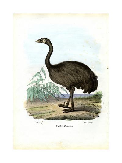 Nandu, 1863-79-Raimundo Petraroja-Giclee Print