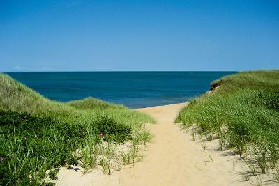 Nantucket Beach Dunes Photo Poster--Art Print