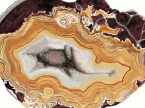 Agate Studies III by Naomi McCavitt