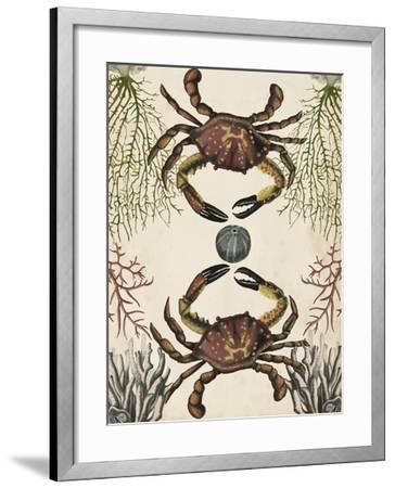 Antiquarian Menagerie - Crab