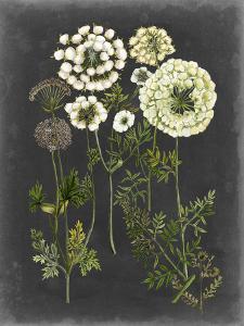 Bookplate Floral II by Naomi McCavitt