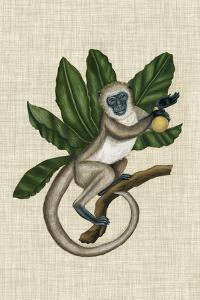 Canopy Monkey III by Naomi McCavitt
