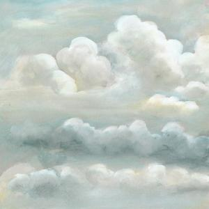 Cloud Study II by Naomi McCavitt