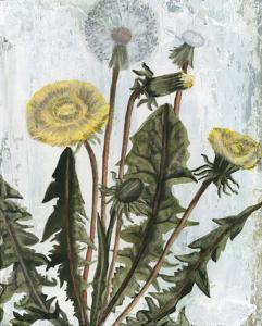 Dandelion Patina II by Naomi McCavitt