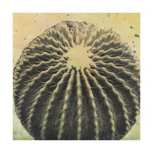 Desert Dreams III by Naomi McCavitt