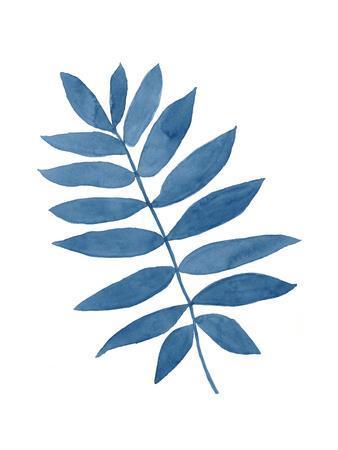 Indigo Botanica V
