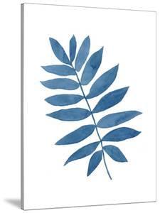 Indigo Botanica V by Naomi McCavitt