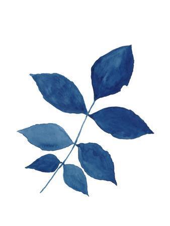 Indigo Botanica VI