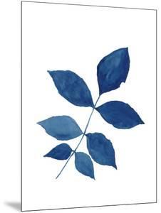 Indigo Botanica VI by Naomi McCavitt