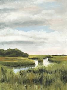 Marsh Landscapes I by Naomi McCavitt