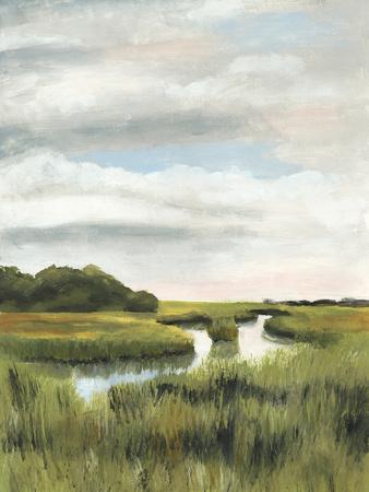 Marsh Landscapes I