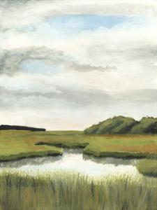 Marsh Landscapes II by Naomi McCavitt