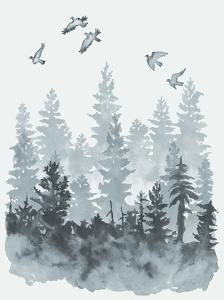 Sierra Vista I by Naomi McCavitt
