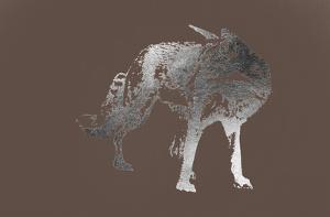 Silver Foil Fox on Bitter Chocolate by Naomi McCavitt