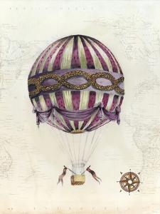 Vintage Hot Air Balloons I by Naomi McCavitt