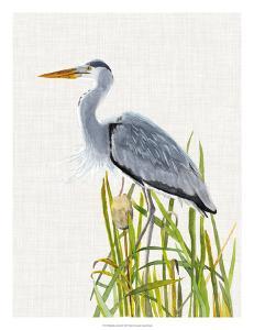 Waterbirds & Cattails II by Naomi McCavitt