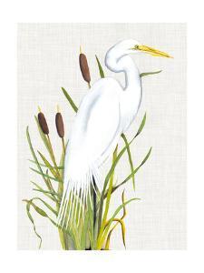 Waterbirds & Cattails III by Naomi McCavitt