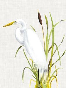 Waterbirds & Cattails IV by Naomi McCavitt