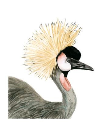 Watercolor Crested Crane by Naomi McCavitt
