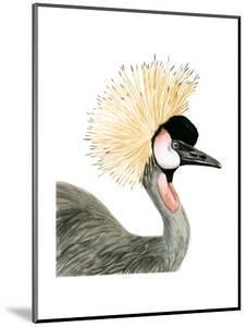 Watercolor Crested Crane by Naomi McCavitt