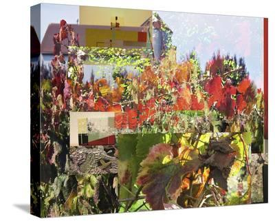 Napa Collage II-Suzanne Silk-Stretched Canvas Print